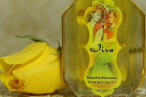 Jiva olie 15 ml